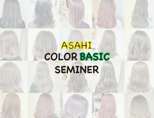 COLOR BASIC SEMINER